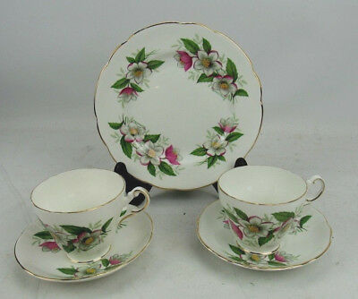 Regency English Bone China Trio Plate Cup Saucer Set + 2nd Cup And Saucer