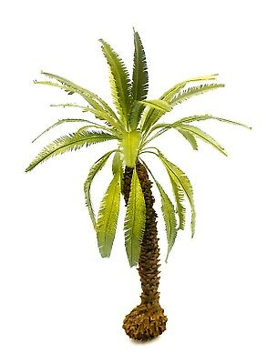 1/35 Scale Desert Palm Tree Model.  Tpd-059 New Product.