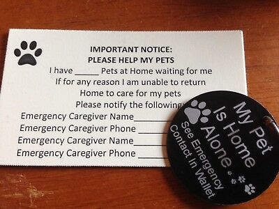 Home alone pet tag
