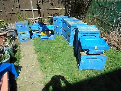 bee hives/ 8 double jumbos, polystyrene