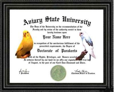Parakeet Lover's Doctorate Diploma / Degree Custom made & Designed for U UNIQUE
