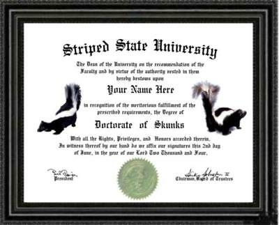 Skunk Lover's Doctorate Diploma / Degree Custom made & Designed for You UNIQUE