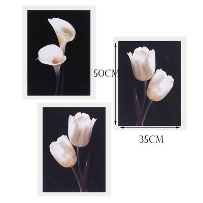 3pcs Unframed Modern Large Canvas Oil Painting Floral Prints Wall Art Poster