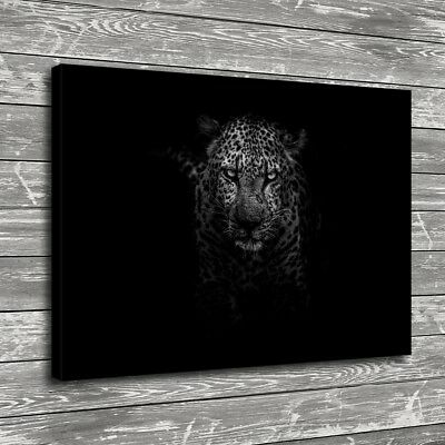 "12""x16""Leopard Animal Black Home Decor HD Canva Print Picture Wall Art Painting"