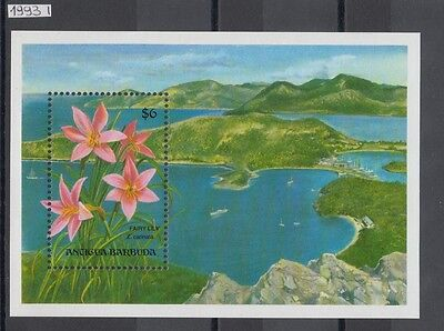 XG-AH926 ANTIGUA & BARBUDA IND - Flowers, 1993 Nature, Lily, nature MNH Sheet