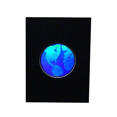 WORLD Round Hologram Picture MATTED, 3D Embossed Type Animated Stereogram