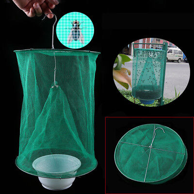 SUMMER GREEN FLY Trap Sunshine Spot Mosquito Catch Capture