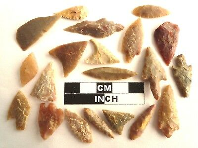 20 x Neolithic Arrowheads - Genuine Saharan Flint Artifacts - 4000BC (2087)