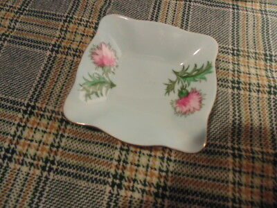 Antique E.b. Foley Glengarry Thistle,hand Painted Mint Dish