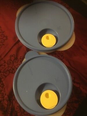 Tupperware Crystal Wave Bowls Clear with Blue Lids