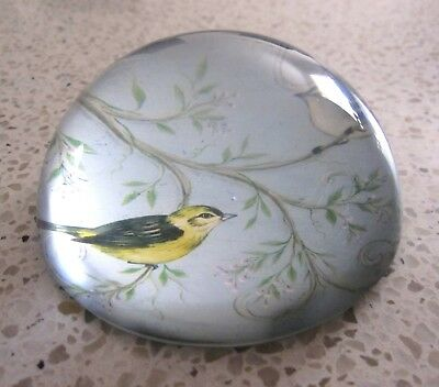 Glass Tree Branch & Bird Design Paperweight by Morgan & Finch, As New Condition