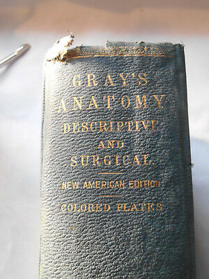 1896 Ed. Gray's Anatomy Descriptive & Surgical by Henry Gray w/ Colored Plates