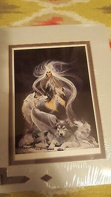 """Spiritual Native American Art Print """"Night Song"""" Signed by Bourdo sealed New"""