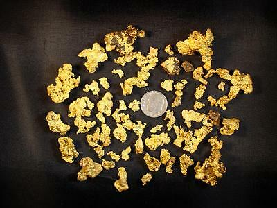 Gold Paydirt 1Lb BEDROCK EDITION - Nuggets Flakes Panning Concentrates Cons