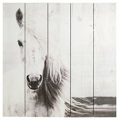 Art for Home Neutral Animal Horse Wall Art Print on wood