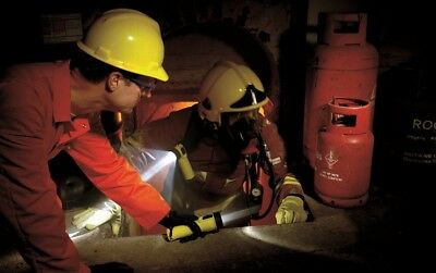 Wolf ATEX TS-24 Safety Torch: T4 Straight
