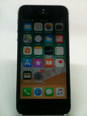 Apple iPhone 5s 16GB Space Gray Unlocked Smart Phone W/ORIGINAL ACCESSORIES #251
