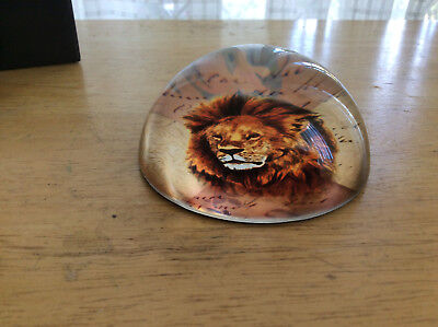 Lion Glass Paperweight