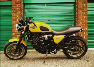 Triumph Thunderbird Sport 900 Cafe Racer 1999 Why Bother With A