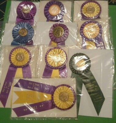 Vintage Lot of 10 American Kennel Club Dog Show Award Ribbons 1980s