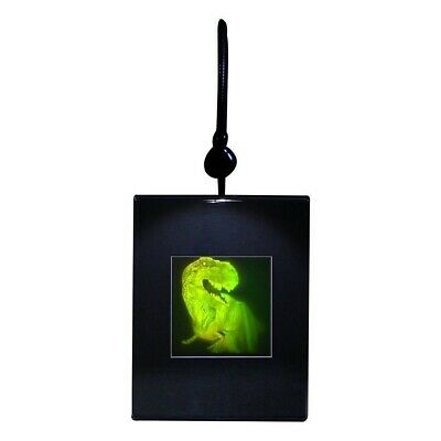 3D T-Rex Large 2-Channel Hologram Picture LIGHTED DESK STAND, Photopolymer Type