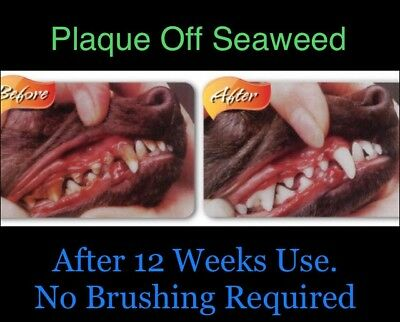Teeth Cleaner Plaque Off + Many Health Benefits 200g 2/3 Months Supply FREE P&P