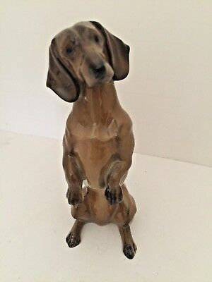 """Rosenthal DACHSHUND """"Doxie"""" Standing Porcelain Figurine - Excellent"""