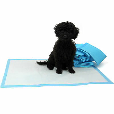 100 XL Puppy Pads Dog Pet Toilet House Training 60x90cm Wee Potty Pee Mats Cat