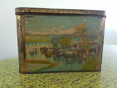 Antique Thomas Lipton Tea Tin Planter