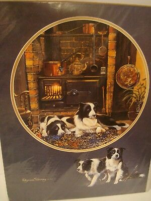 "Border Collie ""Dogs by Woodstove"" Classic Print By Pollyanne Pickering 16""x12"""