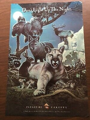 Vintage Smokey the Bear Forest Service Poster Dont light up the night 20x30