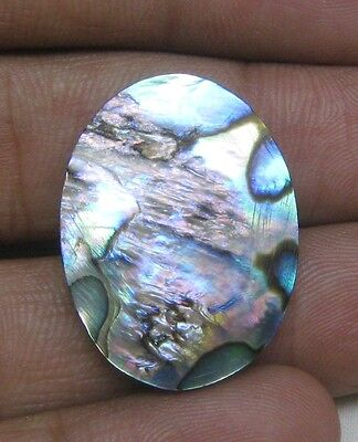 20 Cts Natural Abalone Shell Cabochon Oval Shape Loose Gemstone B 4045