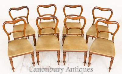 Set 8 Victorian Dining Chairs Balloon Back Rosewoood 1850