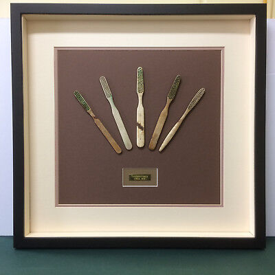 Antique Toothbrushes. Box Framed