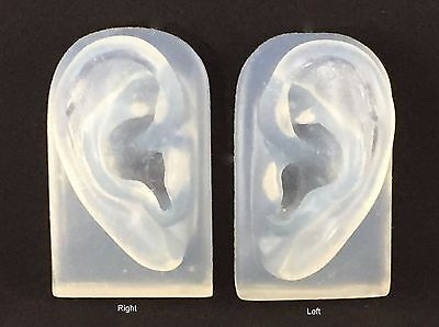 Translucent Ear Model Displays for Jewelry, Audio Music Recording, Drawing etc