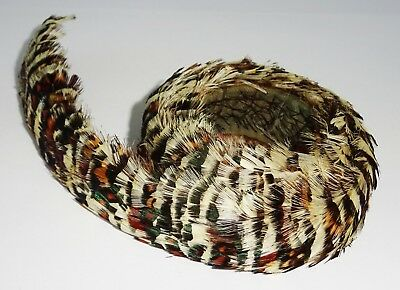Vintage Hawaii Brown Striped Pheasant Feather Lei Hat Band 25 inches long (Mod)
