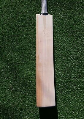 English Willow Custom Cricket Bat SH Professional Profile