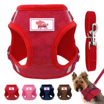 Mesh Padded Dog Harness and Leash Pet Puppy Vest for Small Medium Dogs Chihuahua