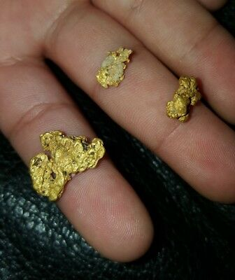 Buy our super Premium GOLD sluice paydirt concentrates by the ounce!