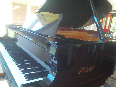 Ernst Kaps 210 X Concert series piano with piano disc quiet time as Steinway