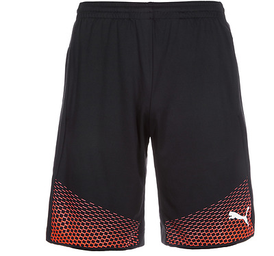 Puma IT evoTRG Touch - Men Trainingsshort - Sporthose - Fußballshort - 654908