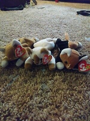 NIP (BEND IN tag), Snip (bend in tag), and Chip beanie babies