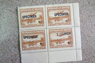 Bolivia specimen muh  back stamped  JH Stolow
