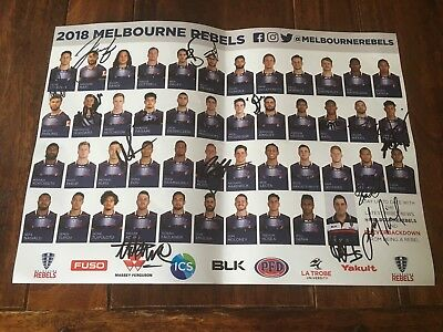 Melbourne Rebels 2018 Poster Signed by 16 Hodge Mafi Coleman Not Jersey PROOF