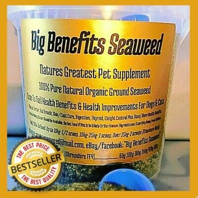 """420g Saver Gets Dogs PlaqueOff Cure Bad Breath Clean Teeth Oral Care """"Try It"""""""