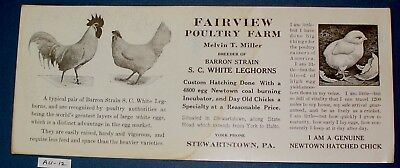 Chickens-Chick on Blotter Fairview Poultry Farm Stewartstown Pa. Blotter unused
