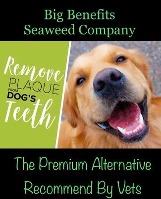 """""""BigBenefitsSeaweed"""" Gets PlaqueOff Dogs Many Benefits MASS420g Fast Free P&P"""