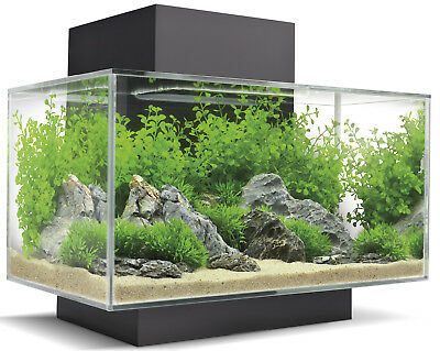Fluval Edge Aquarium 23 litre in Gloss Black Home Aquarium Kit