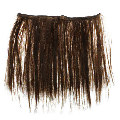 25cm Straight Hair Wig Synthetic Hair for 1/3 1/4 1/6 BJD Barbie Doll Brown