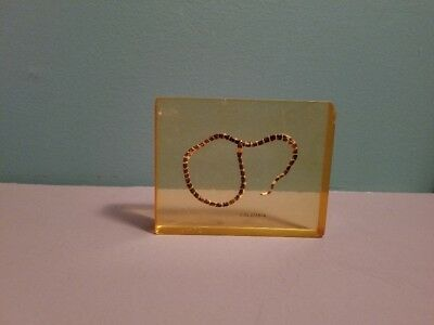 Vintage Snake encased in acrylic from Columbia